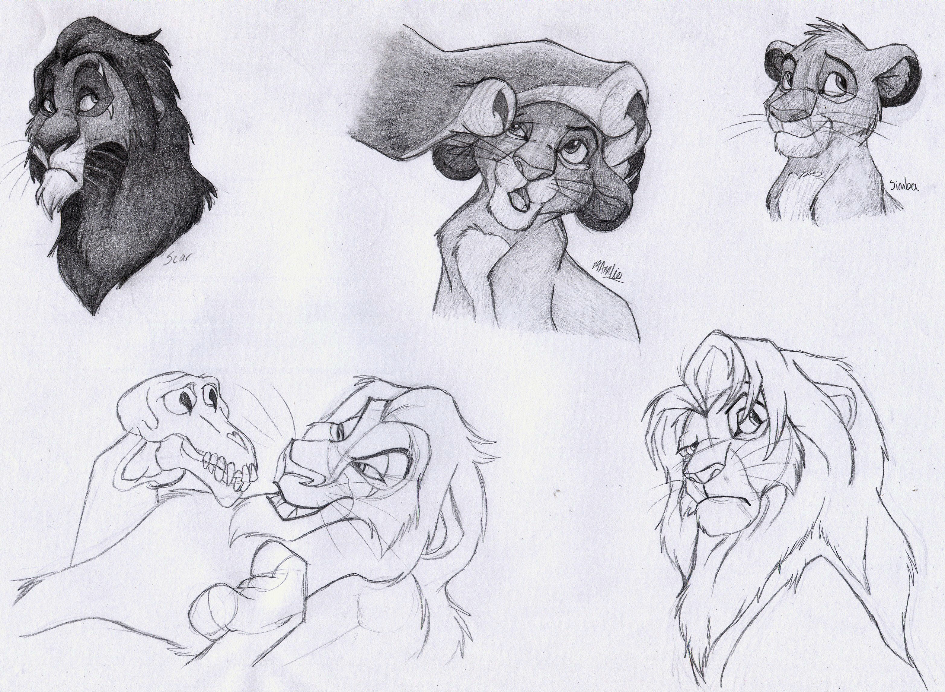 TLK Drawings 2 Atarials Album Fan Art Albums Of My Lion King