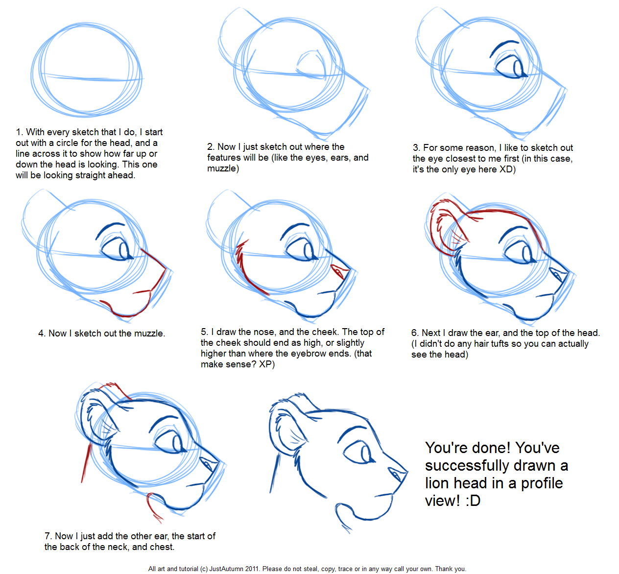 how to draw feline profile tutorial