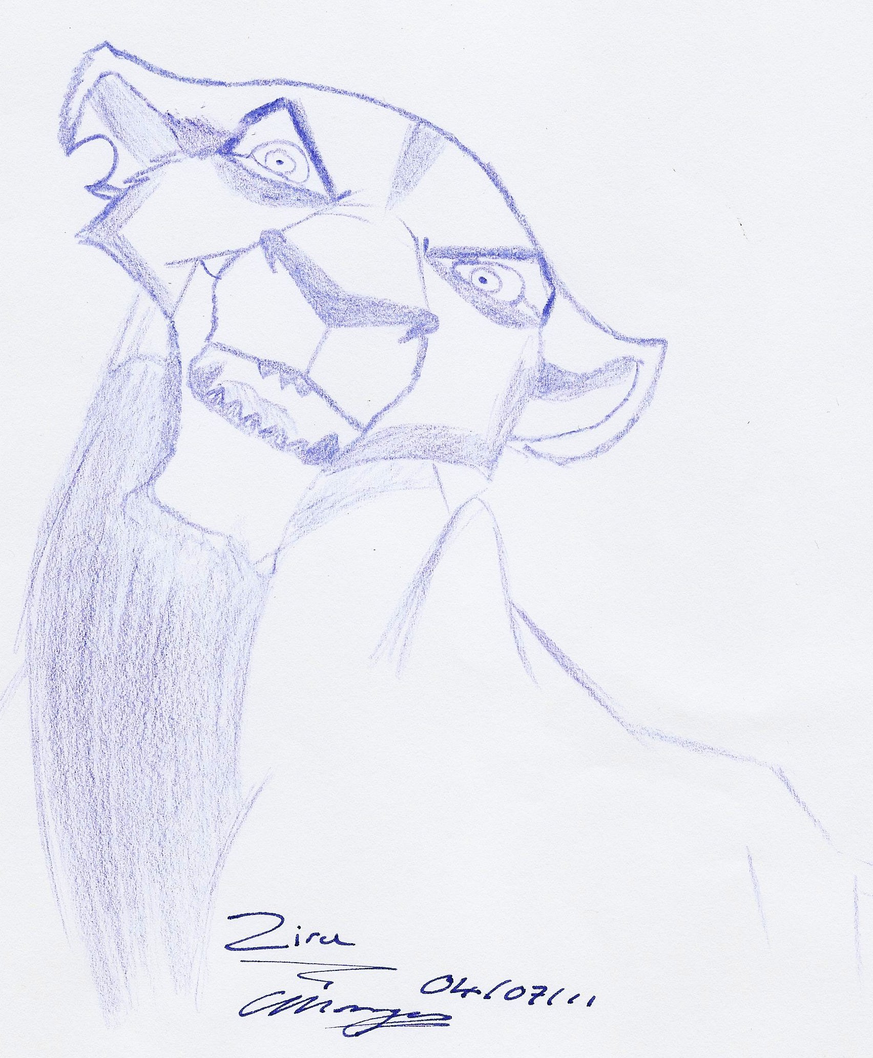 Back  gt  Gallery For  gt  pencil drawings of the lion kingPencil Drawings Of The Lion King